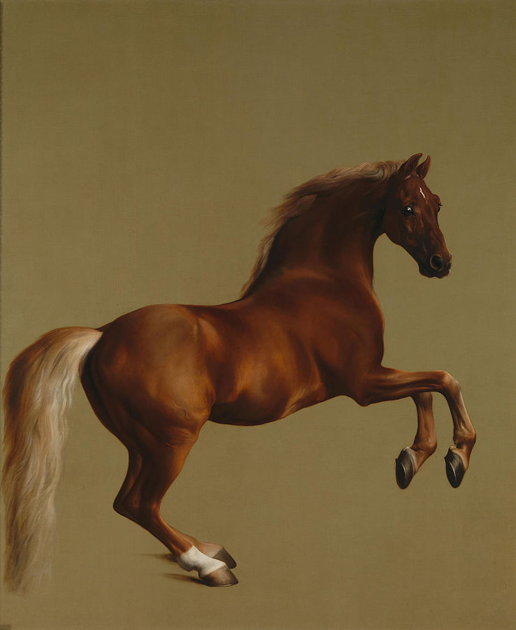 Whistlejacket, George Stubbs